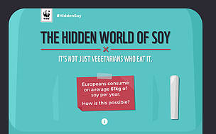 Discover how much soy is hidden in your food, and what the environmental impacts are