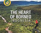 #heartofborneo #hob #indonesia #2017