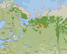 Map of Russian boreal forests. IFL territory is in dark green. Territory included in Mondi's moratorium is denoted in orange with stripes.