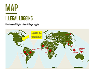 Illegal logging map