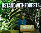 World leaders announce support for forests