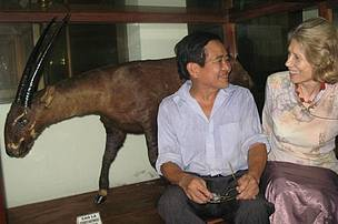 Do Tuoc, Vietnamese scientist who discovered the saola with John Mackinnon in 1992, and WWF consultant, Elizabeth Kemf, at FIPI's saola exhibition in Hanoi, reminisce about 25 years of collaboration.