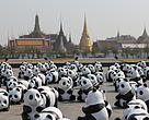The 1600 pandas in front of Bangkok landmark, the Temple of the Emerald Buddha.
