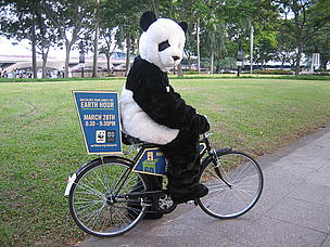 Panda mascotte riding a bike in Esplanade Park, Singapore during Earth Hour_28 March 2009