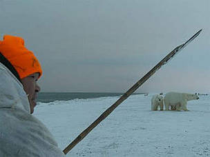 A member of the Umky Polar Bear Patrol warns off a polar bear using the traditional Chukchi method ...      © Tom Arnbom