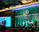Hanoi Conference on Illegal Wildlife Trade