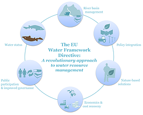 Infographic on how the WFD works  	© Martina Mlinaric/WWF