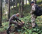 Forest Watch expert together with State Ecology inspecter measure illegaly logged trees near Galivka village in the Carpathians, Ukraine