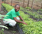 Mathias is one of the farmers registered to the Busongora Joint Farmers Association