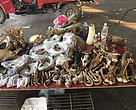 Illegal wildlife trade in the Greater Mekong region