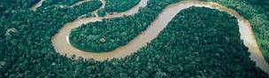 River meanders in rainforest Peru