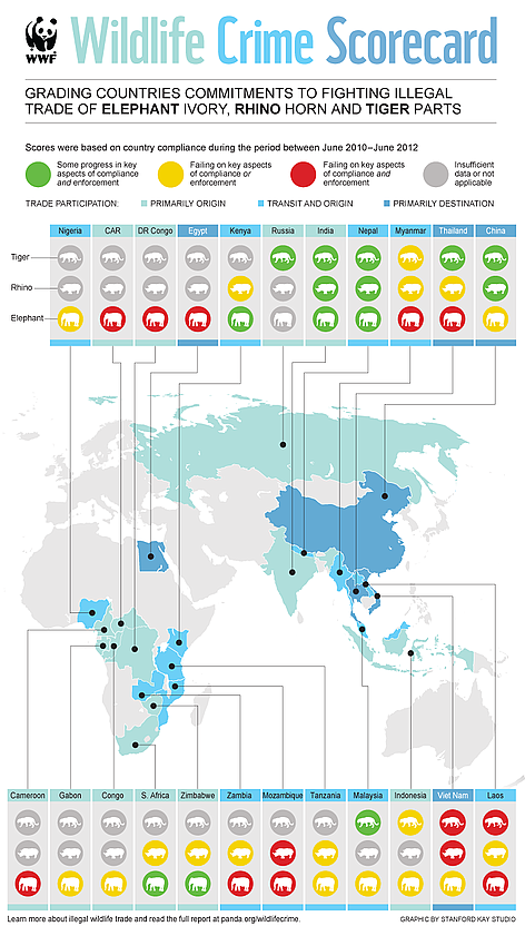 Worksheet. Wildlife Crime Scorecard  WWF