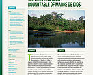 REDD+ Inspiring Practice: Creating the Environmental Services and REDD+ Roundtable of Madre de Dios, Peru