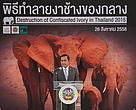 Thailand's first ivory destruction sends a crushing message of zero tolerance to wildlife criminals
