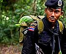 Special Ops Anti-poaching officer, Thailand In light of the recent escalation in poaching of elephant and tiger the Thai government have assigned a special ops military unit to help park rangers tackle the poaching issue.  Over 1,000 rangers worldwide have lost their lives protecting wildlife and natural places in the last 10 years. Well armed and well organised illegal poaching crime syndicates continue to target wild elephant and rhino in Africa for the large profits to be made from the illegal wildlife trade.