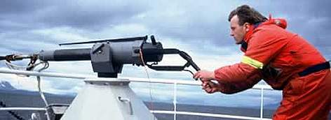 Whaler demonstrating a harpoon gun in Norway. rel=