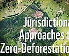 Deforestation in Acre, Brazil