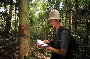 Jojon S. Nata, sebangau national park, bukit baka bukit raya national park, central kalimantan, west kalimantan, heart of borneo
