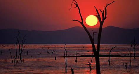 [Image: kariba_lake_111087_353772.jpg]