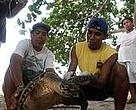 Cristina Ordoñez (CCC) and villagers tagging a hawksbill turtle at Chiriqui Beach, once the largest nesting site for this species in the Caribbean.