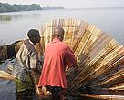 Locals working on Lac Tumba in the Democratic Republic of Congo, a region that has become part of the worlds largest protected freshwater site following its recognition as a wetland of international importance by the Ramsar Convention.