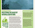 Living Amazon Initiative Bolstering the value of Natural Ecosystems
