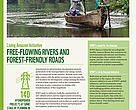 Living Amazon Initiative Free - Flowing rivers and forest - friendly roads