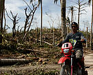 A man rides a motorbike past flattened coconut trees after Typhoon Haiyan hit on Malapascua Island, off the north coast of Cebu, Philippines.