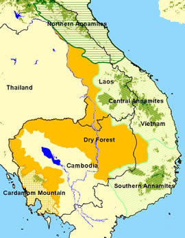 Lower Mekong Dry Forest Ecoregion.  	© WWF