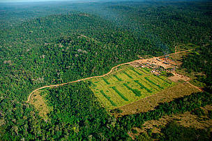 Logging mill near Apiacás, Mato Grosso state, Juruena National Park, Brazil.