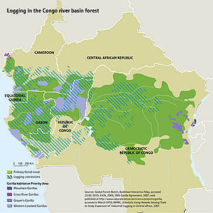 Logging in the Congo river basin forest. China is the largest consumer of logs from the DRC, buying ... / ©: Riccardo Pravettoni / Sources: Global Forest Watch, Bushmeat Interactive Map, accessed 23-02-2010; IUCN, 2009; CMS Gorilla Agreement, 2007, web published at http://www.naturalsciences.be/science/projects/gorilla, accessed in March 2010; WHRC, Scientists Using Remote Sensing Tools to Study Expansion of Industrial Logging in Central Africa, 2007.