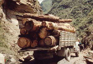 Logging truck. Wolong Narure Reserve, Sichuan province, China. / ©: (c) WWF-Canon / Soh Koon CHNG