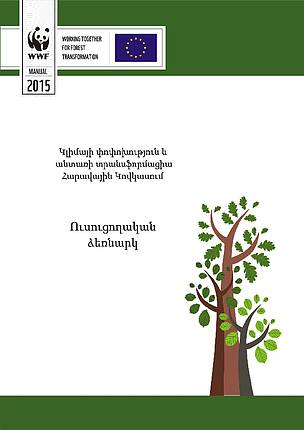 Climate Change and Forest Transformation in the Southern Caucasus