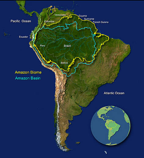 About The Amazon WWF - Where is the amazon river