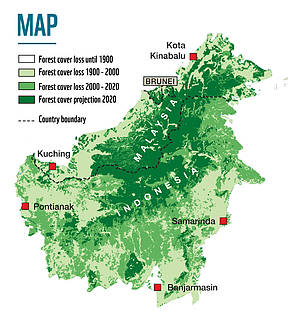 Forest cover in Malaysia and Indonesia
