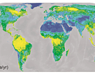 Global map of ecosystem service values (ESV) in dollar per hectare per year. Source: Turner et al. 2011. Bioscience.