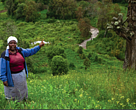 Margaret Mundia a farmer in the Upper Turasha