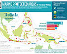 MPAs in the Coral Triangle thumbnail of infographic