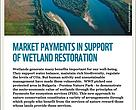 Market payments in support of wetland restoration