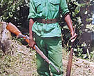Hunter-turned-ranger, Thomas Mbot displaying two guns seized from poachers.