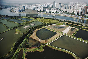 Mai Po wetlands are critical to Hong Kong