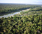 Aerial view of part of the Mekong Flooded Forest.