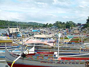 """Sustainable Overfishing"" in Mindoro"