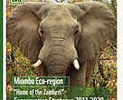 Miombo cover