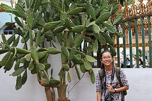 Chhor Vida Khem, communications volunteer/intern with WWF Cambodia through WWF Int'l Youth Volunteer/Internship Programme