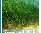WWF Scorecard report examines the progress made by the Baltic Sea countries towards the development of an ecologically coherent network of well-managed marine protected areas (MPAs) in the Baltic Sea