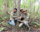 Community research rangers deploying camera traps