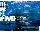 The tuna in your sandwich needs help. Because many species are being overfished driving them to the brink of collapse. Indiscriminate tuna fishing also harms other sea life.WWF is working with fishers to get smarter fishing gear in the water and leaders in the tuna industry to get more sustainable seafood in your sandwich. WWF also co-founded the Marine Stewardship Council (MSC) an independent organisation that certifies and rewards sustainable fishing. Look for the MSC's ecolabel to enjoy sustainable seafood.
