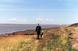Coastal path along the Baltic Sea coast