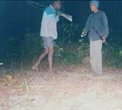 Poachers caught in camera-trap